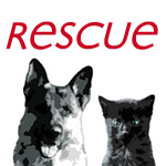 Avatar de RESCUE