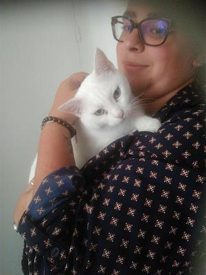 Galaad, chatte blanche, 49, adoptable partout en France-21742968_501252706916201_1458389511366216559_n.jpg