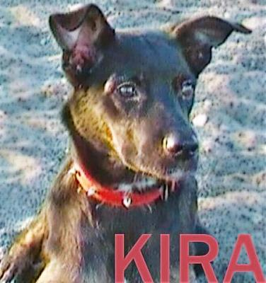 Kira adorable louloute 3 ans attend sa famille (Grenade, Espagne)-a_161330532494.jpg