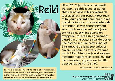 Reiki à l'adoption !-reiki.jpg