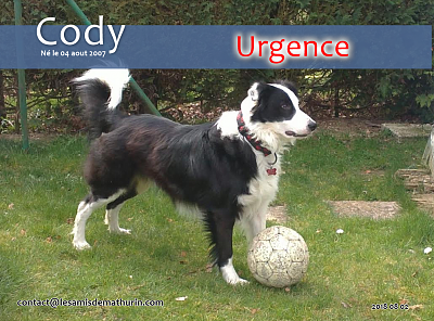 **SOS pour CODY - 11 ans**-cody-01.png