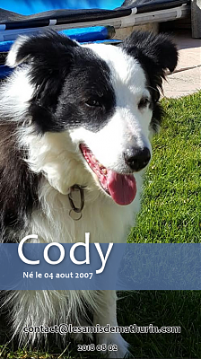 **SOS pour CODY - 11 ans**-cody-04.png