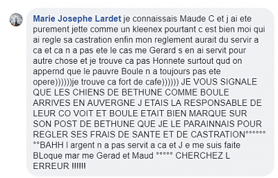 BOULE M labrador 11 ans-aaaa.png