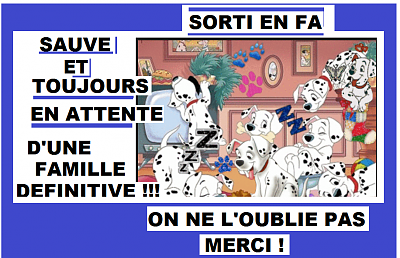 ULLA MAMIE 13 ans-a109890.png