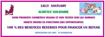 Stone marraine: cosmétiques végans pr financer un REFUGE-lilly-sanctuary-image-fofo.jpeg