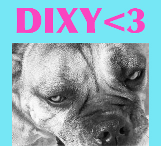 Nom : dixy.jpg